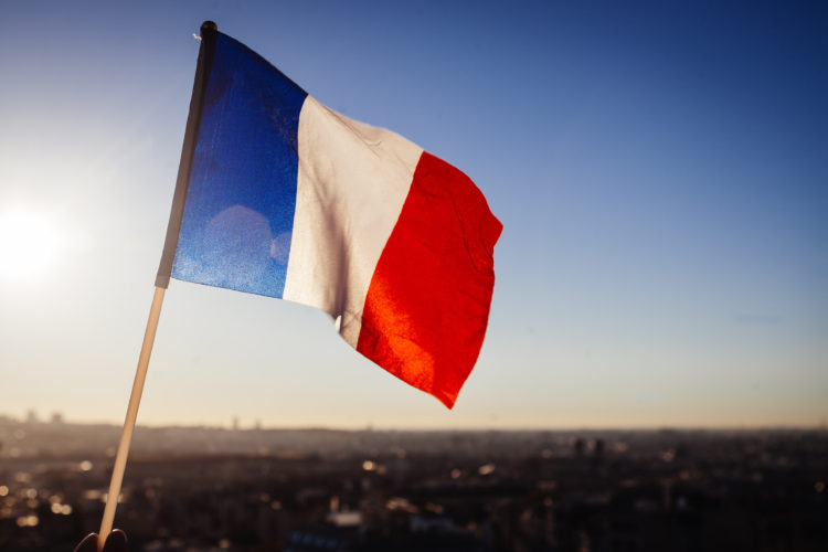 Auch bei der WM 2018 in Russland will das Team um Trainer Didier Deschamps die Fahne Frankreichs hochhalten. Photo: Shutterstock.