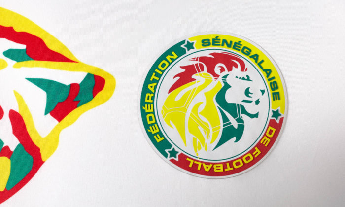 Senegals 2017 Heimtrikot im Detail. Besonders der farblich ansprechende Löwenkopf gefällt.