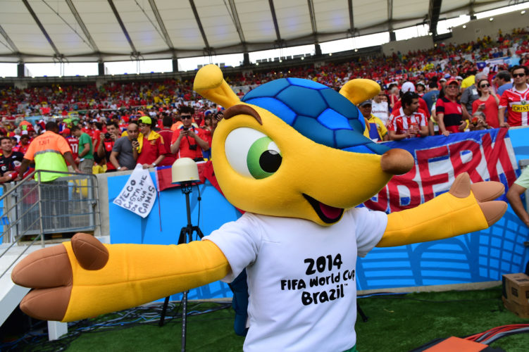 Das offizielle FIFA WM 2014 Maskottchen Fuleco AFP PHOTO / MARTIN BERNETTI